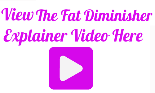 the fat diminisher system sales page